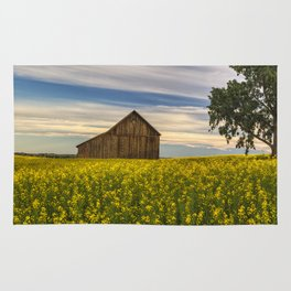 Dazzling Canola in Bloom Rug