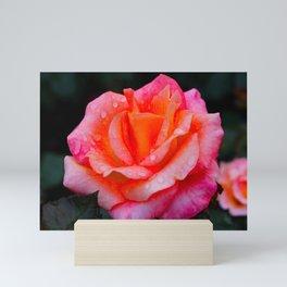 Rose Pink Mini Art Print