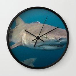 Lemon Shark Portrait Wall Clock