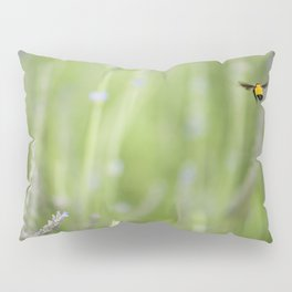 Imposible flight Pillow Sham