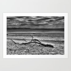 Driftwood 4 mono Art Print