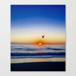 Seagull at Sunrise Canvas Print