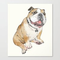 bulldog Canvas Prints featuring bulldog  by Laura Graves