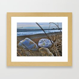 Shells and Beach Stones Framed Art Print