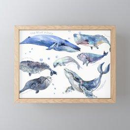 Whales, Whale design, whale wall art, sea, marine aquatic animal art, school learning wall Framed Mini Art Print