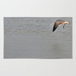 The Birds of Cutler Bay Wetlands (Amazing Grace!) Rug
