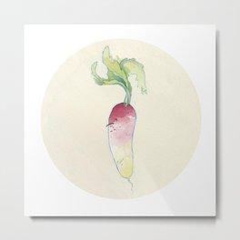 Turnip Metal Print