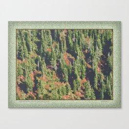 AUTUMN BLUEBERRIES IN OPEN ALPINE FOREST NORTH CASCADE RANGE Canvas Print