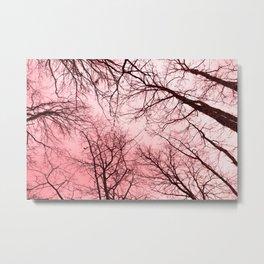 Naked trees tops, pink sky Metal Print