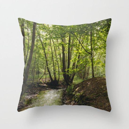 Small woodland stream. Throw Pillow
