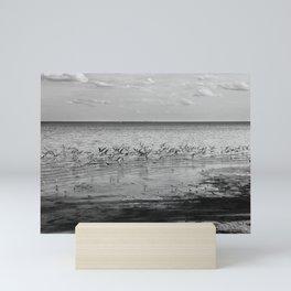 Flock of B&W Mini Art Print
