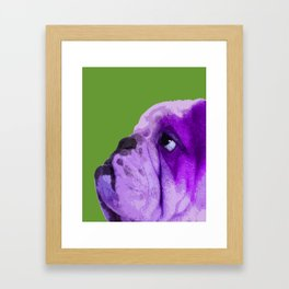 English bulldog portrait, Green Pop art Framed Art Print