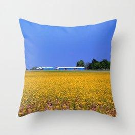 Contrast III Throw Pillow