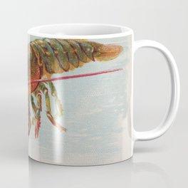 Vintage Illustration of a Lobster (1889) Coffee Mug