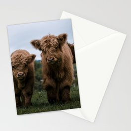 Scottish Highland Cattle Calves - Babies playing II Stationery Cards