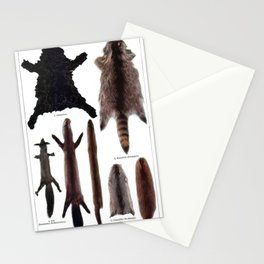 Meyer's Blitz-Lexikon - German Visual Dictionary (1932) - Furs Stationery Cards