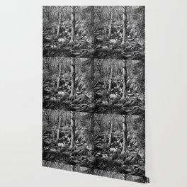Becky Falls Wallpaper