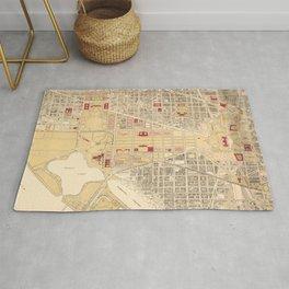 Vintage Map of The Washington D.C. Mall (1917) Rug