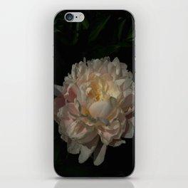Peony 6 iPhone Skin