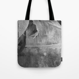 grave under leafs Tote Bag