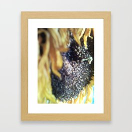 Sunflower Friend Framed Art Print