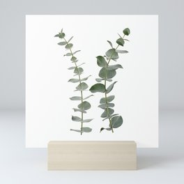 Eucalyptus Branches I Mini Art Print