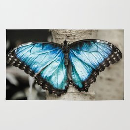Black And White Blue Morph Butterfly Rug