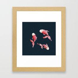 Digital painting of Koi fishes in dark spotty background Framed Art Print