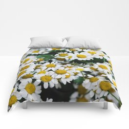 Camomile Wild Flowers Comforters