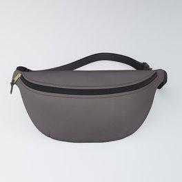 Solid Dark Black Eel Color Fanny Pack