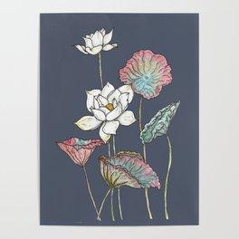 Lotus Symphony Poster