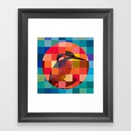 Kingfisher Sunset Framed Art Print