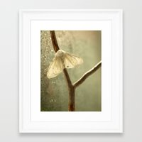 moth Framed Art Prints featuring moth by Nature In Art...