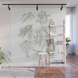 Herbs Wall Mural