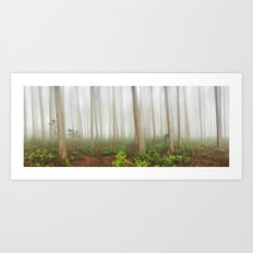 Mystical Wood Art Print