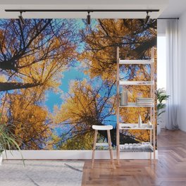 trees throw blue sky landscape Wall Mural