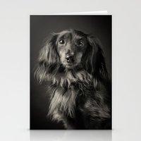 waldo Stationery Cards featuring Family Dog - Waldo the Shy Dog by Isaloha Photography