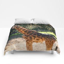 Baringo Giraffe Comforters