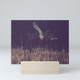 Barred Owl Hunting Mini Art Print