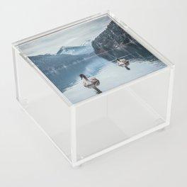 Couple of swans, romantic scene in bavarian alps Acrylic Box