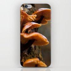 Mushrooms II iPhone & iPod Skin