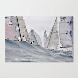 Volpe Canvas Print