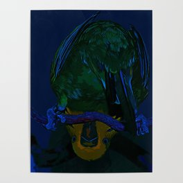 budgie hangs upside down on the branch vector art moonlight Poster