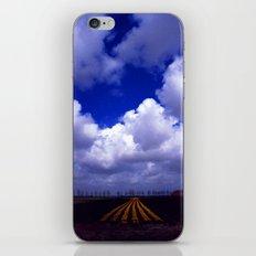 Tulip Trail iPhone & iPod Skin