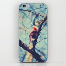 Winter Sonnet iPhone & iPod Skin