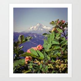 Glacier Peak Art Print