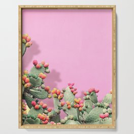 Prickly Pear plants on Pink Serving Tray