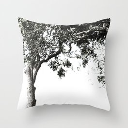 South African Trees Collection Throw Pillow