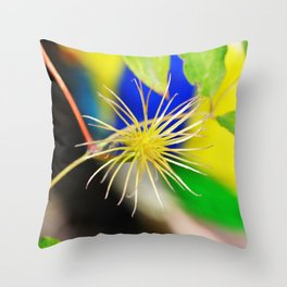 Clematis bloom is gone Throw Pillow