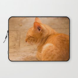 Orange Cat Is Resting On The Terrace  #decor #society6 #homedecor Laptop Sleeve